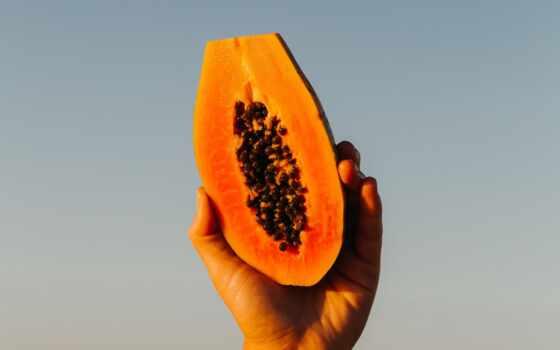 papaya, business, muse, sun, героиня, procent