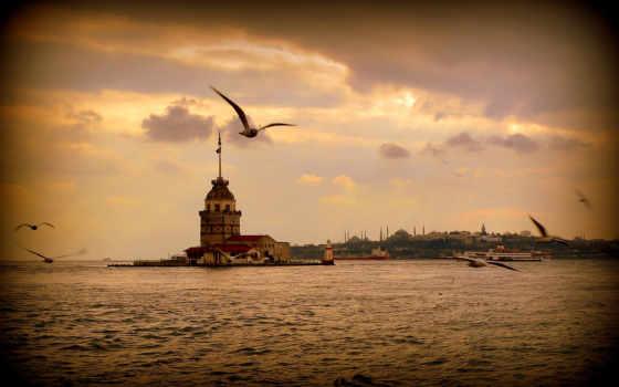 город, istanbul, море, закат, landscape, чайки, города, turkey, ночь, огни,