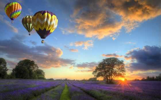 воздушные, шары, небе