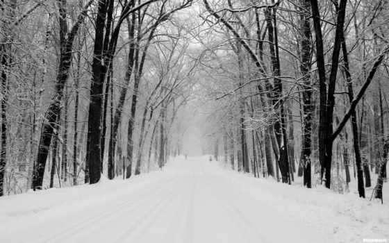 дорога, winter, снег Фон № 65254 разрешение 1920x1200