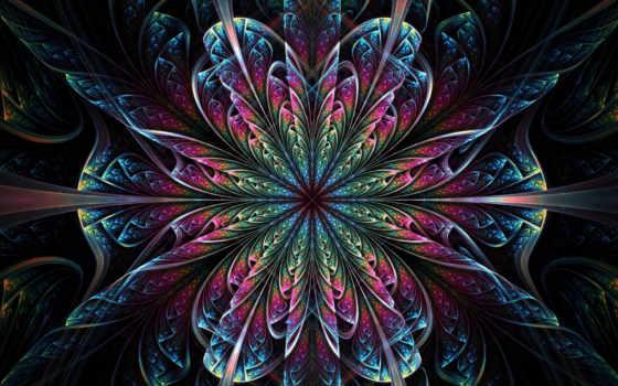 giáo, hội, phát, нам, việt, thường, hoa, nhất, ком,