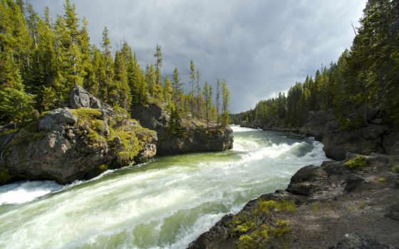 река, горная, лес