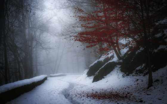 природа, картинка, tapety, giay, winter, time, zima, небо, margin, mmr,