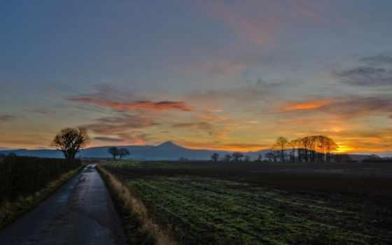 закат, поле