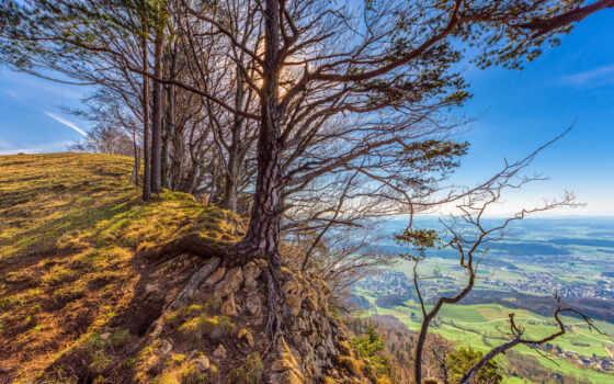 дерево, wallpapermaniac, blue, landscape, природа, овраг, edge, water, stromy, krajina