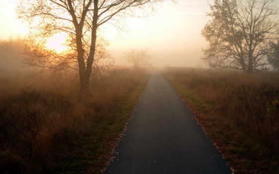 дорога, пейзаж