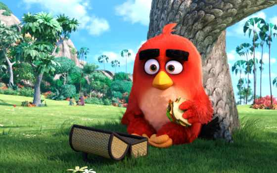 angry, birds, кинотеатр
