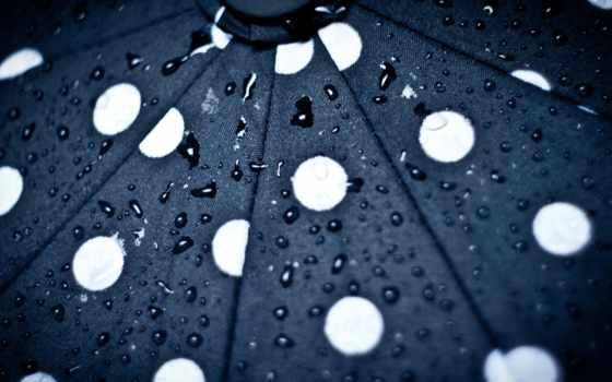 зонтик, чёрно, текстуры, зонты, женские, модные, белые, стальные, black, но, классики,