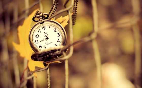лист, часы, осень, природа, цепочке, favourite,
