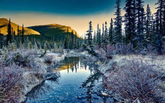 природа, дерево, landscape, гора, ручей, камень, снег, sun, лес, небо, иней