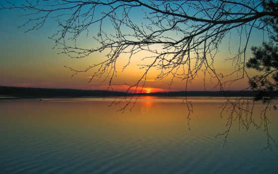 тишина, река, вечер, солнце, закат, спокойствие, берег, ветви, гармония, картинку,