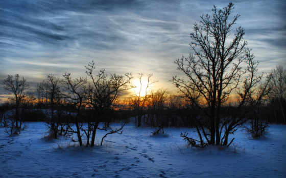 природа, закат, зима, вечер, пейзаж, мароз, снег, деревья,