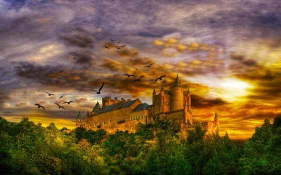 castle, fantasy, лес, небо, birds, красавица, castles, восход,