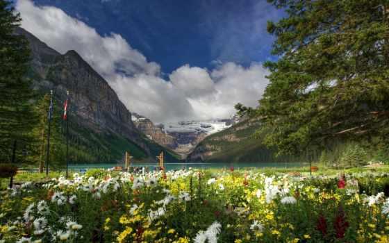 горы, цветы, природа Фон № 134780 разрешение 1920x1080