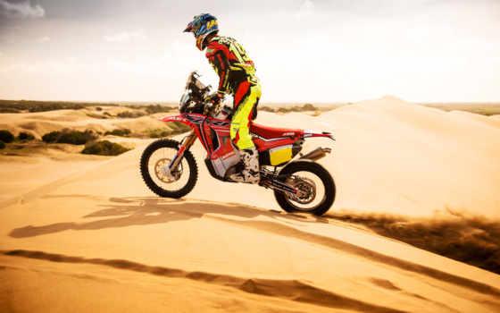 bike, dakar, wexler, пустыня, песок, мотоцикл, tab, honda, февр,
