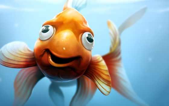 fish, золотая, рыб, программы, корм, рыбки, fischer, sparks, marc,