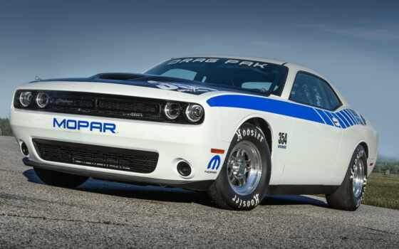 car, dodge, drag, challenger, rod, hot, пак, mopar, muscle, white, улица