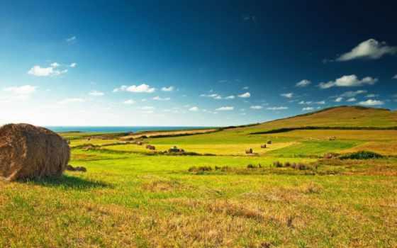 зелёный, landscape, взгляд, поле, great, деревня, луг, зеленое, стог, сено,