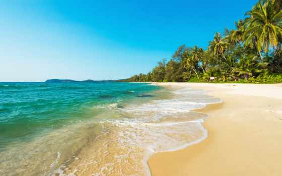 пляж, природа, гряда, море, берег, песок, landscape, рай, palm, побережье