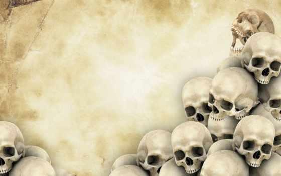 черепа, череп, текстура