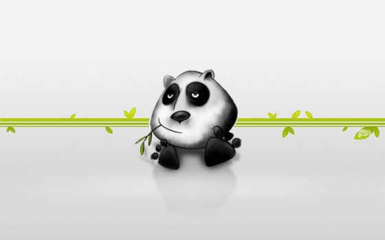 прикольный, мультяшный, панда, мультяшные, прикольные, zhivotnye, кот, разделе,