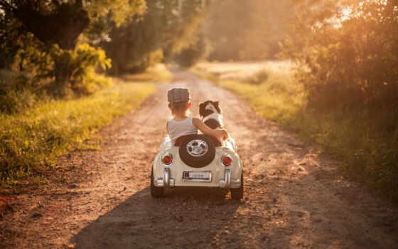 собака, машина, собака, ребенок, малчик, car, boy, ребенок, white, avtokreslo, детская
