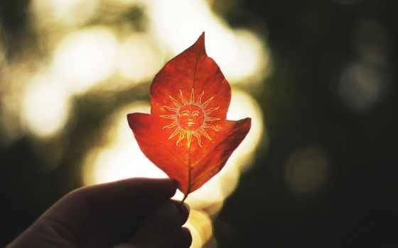 осень, лист, рука, человечья, держит, нарисованным, руки, red, солнцем, макро,