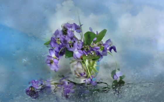ваза, cvety, букет, color, inside, палуба, когда, her, snimat, entresol, поставить