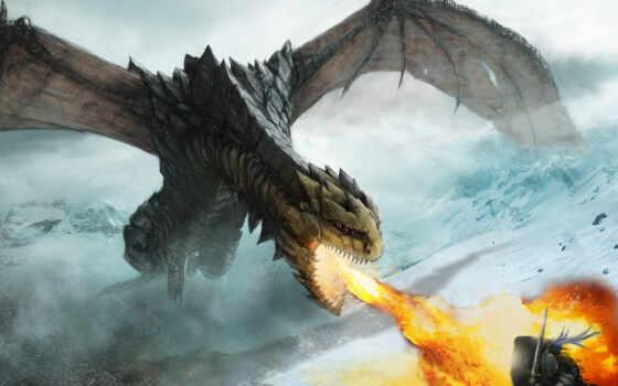дракон, ярость