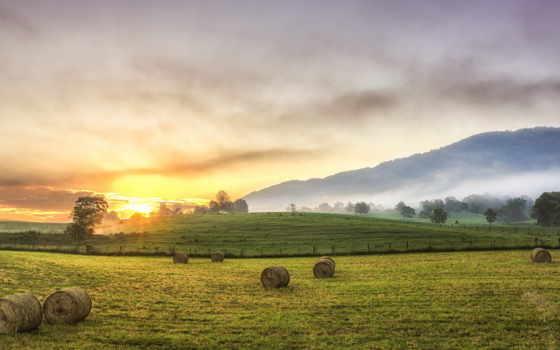 август, сено, севан, небо, деревя, eli, путь, млечный, тюки, ночь,