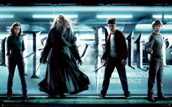 гарри, дамблдор, поттер