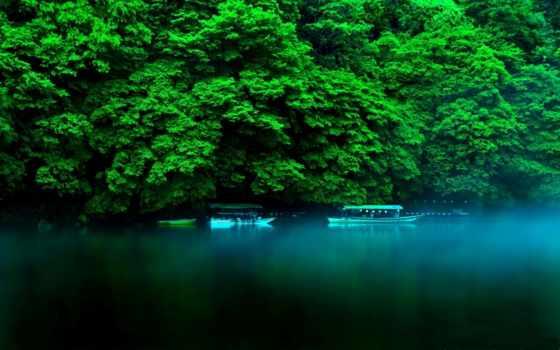 japanese, хонсю, остров, kyoto, префектура, природа, страница, разных, summer, landscape,
