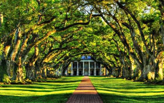 природа, trees, landscape, листва, villa, трава, аллея, зелёный,