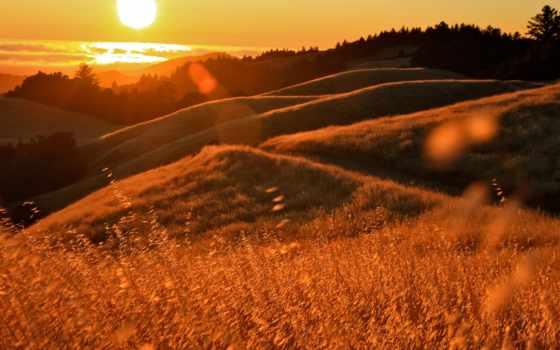 закат, ocean, sun, блики, травы, холмы, всадник, фоны,