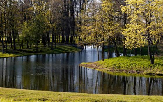 priroda, красивая, заставки, потрясающе, природы, vesna, только, парка, ежедневно, красивые, февр,