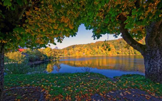 fondos, otoño, pantalla, paisaje, hojas, rboles, escritorio, alemania, descargar, ulmen,