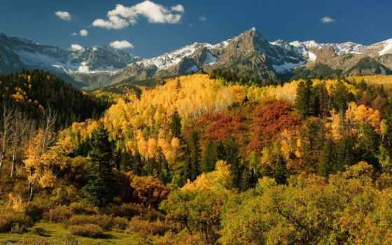 осень, лес, trees, горы, широкоформатные, природа, san, mountains, картинка, online, juan,