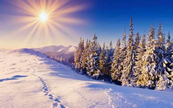 new, год, christmas, отдых, карпатах, дней, буковель, буковеле, ясиня,
