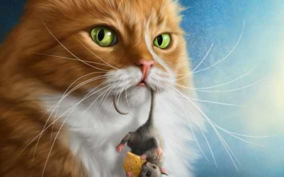 кот, уже, лучшая, кошки, коты, мыши, mouse, загружено,
