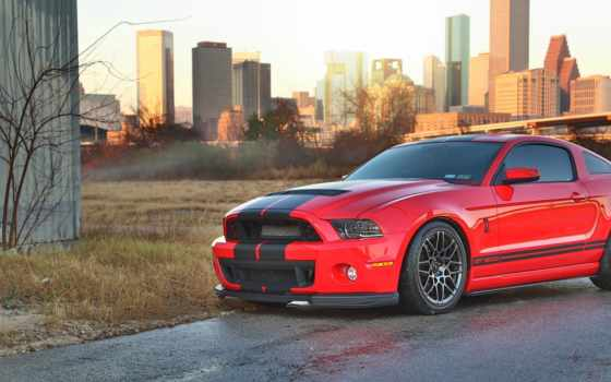 ,gt500,ford, shelby, mustang, cobra,