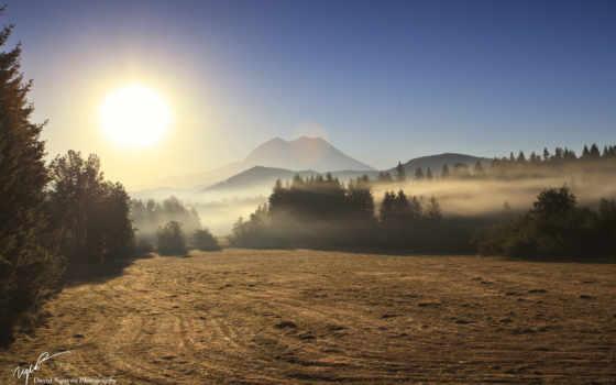 утро, поле, туман Фон № 80945 разрешение 1920x1200