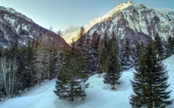 альпы, природа, winter, trees, дек, изображение, австрия, landscape, небо, трава,