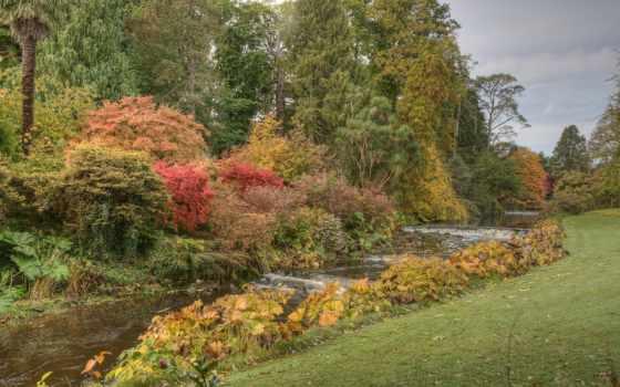ирландский, компьютер, сады, mount, usher, природа, ireland,