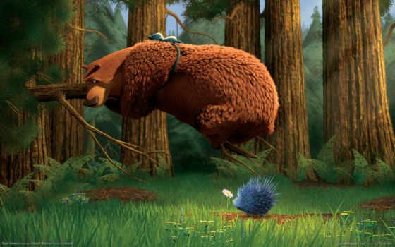 охоты, сезон, медведь, буг, boog, open,