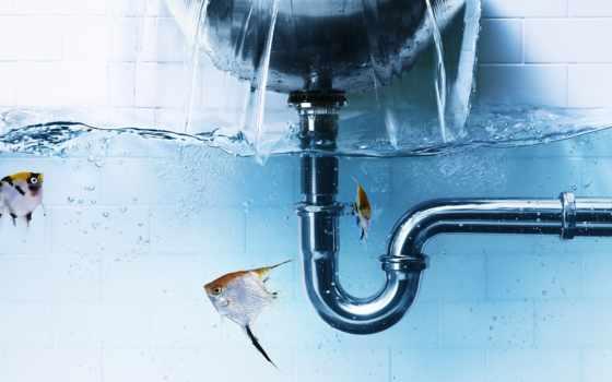 water, creativ, рыбки, мойка,