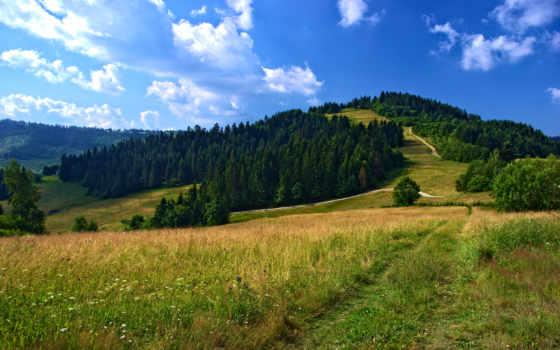 природа, campo, пейзажи -, paisaje, landscapes, excelent, природы, paisajes,