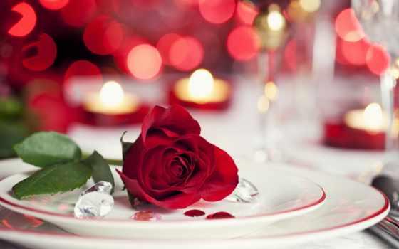 cvety, розы, свечи, red, красивые,