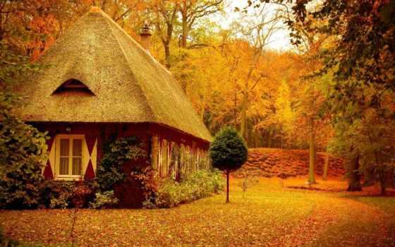 природа, красивые, house, lesy, коттедж, осень, природы, lodge, ocean, море, зелень,