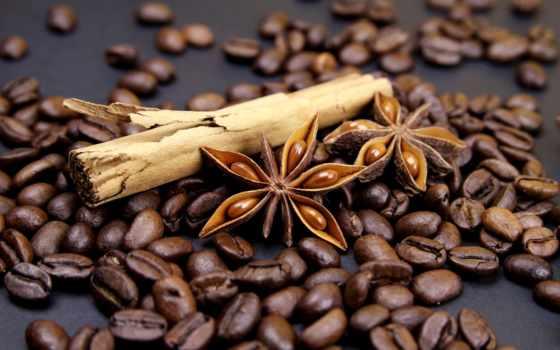coffee, зерна, cinnamon, anise, палочки, бадьян, специи, cup,