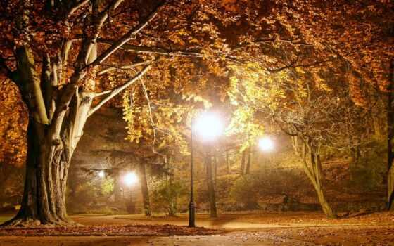 park, осень, флот